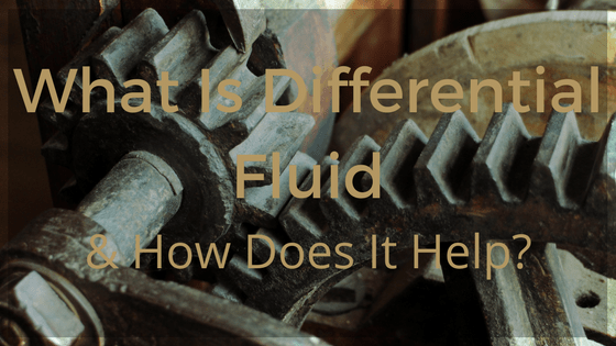 differential fluid
